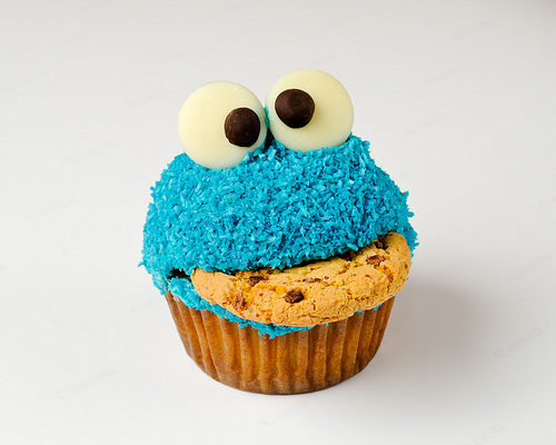 cookie monster photo