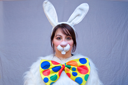 bunny cake photo